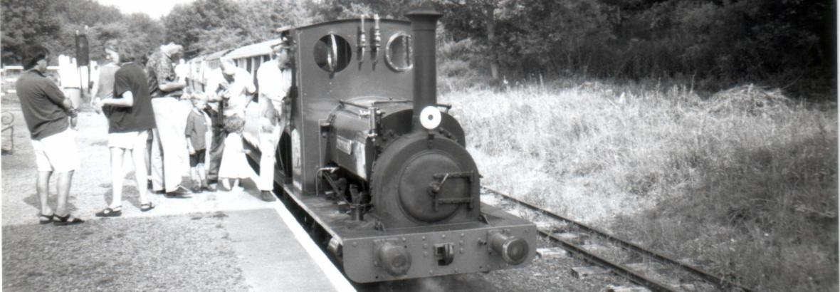 Maid Marian at Pen-y-Bont, Summer 1995